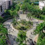 Parul University of Gujarat Contact