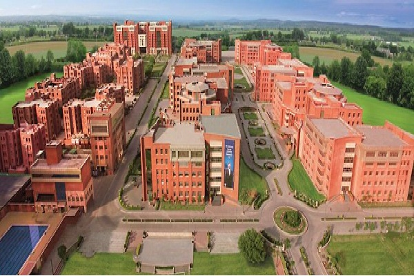 Amity University Contact Number